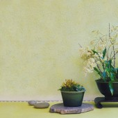 san-marco-decori-classici-02-640×640