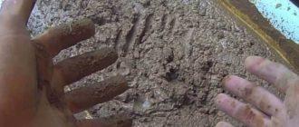 цементная штукатурка раствор